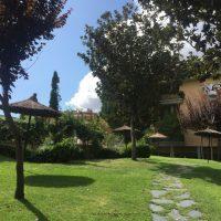 jardin jpg